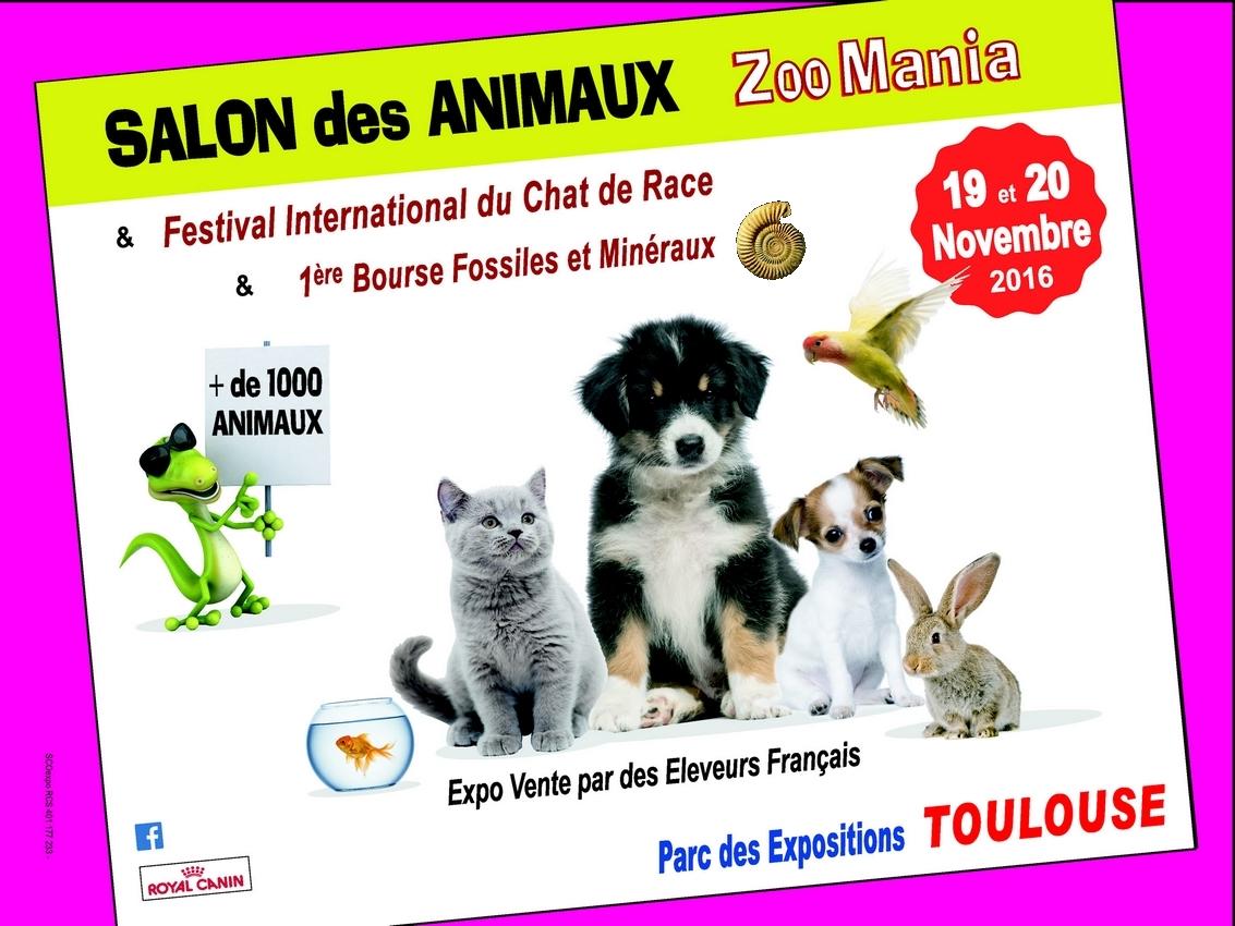 Zoomania toulouse 2016 ma maison personnelle - Salon des animaux toulouse ...